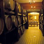 TodoroffTodoroff бе един от първите производители на вино в България, който започна да разработва модел на винения туризъм през 2007 г. С него той успя не само да даде тласък на развитието на Брестовица, където е базиран, но и да зададе тон за формулата, която включва комбинация от дегустации с вино и мезе, но също хотел, ресторант и екстра услуги – един самодостатъчен модел на развлекателен комплекс, като в случая развлечението е виното.Дегустациите тук могат да са на ниво непрофесионалисти или изцяло индивидуални и по-задълбочени. Естествено виното е в изобилие и в ресторанта с интернационална и традиционна родопска кухня. То е и звездата в първия по рода си в България спа център, в който процедурите са с вино и гроздови продукти. Повече информация на: www.todoroff-wines.com