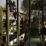 """Прекарайте един чудесен Бакхус Вино Ден с вкусна храна и хубаво вино в мелнишкия регион.Така преди 15 години той започва да изкупува земя около Хърсово, за да я комасира и да я превърне в общо 300 дка засаждения със завидно разнообразие от сортове - от класическите мерло, каберне, сира, пино ноар, санджовезе, вионие, шардоне и совиньон блан до местните сандански мискет, мавруд, руен, мелник 55 и, разбира се, широката мелнишка лоза. Четирите декара с този автохтонен локален сорт са разположени пред самата изба и се отличават от останалите насаждения с това, че се отглеждат по стария начин - на """"кютук"""" или чашковидно, и се обработва изключително ръчно.""""Някога всичко наоколо е било в лозя, но когато преди години започнахме да изкупуваме парцелите, тук бе пустош. Постепенно обаче районът започна са се съживява, макар и малко мъчително"""", казва Любка Зикатанова.И наистина малнишкият край вече се особособява като един от силните винени региони на България, като само в радиус от 15-ина километра около Вила Мелник има над 10 други изби и проекти."""