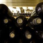 Прекарайте един чудесен Бакхус Вино Ден с вкусна храна и хубаво вино в мелнишкия регион.Това дава надежда и амбиция на семейството, че ще успеят върнат славата на мелнишкото вино и ще станат част от Възраждането на Мелнишкия район, който има вековна винена история и неповторим тероар - топлото слънчево време, особените песъкливи почви с варовик и вулканични отлагания и дългата традиция.