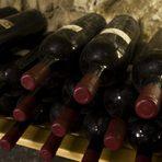 Прекарайте един чудесен Бакхус Вино Ден с вкусна храна и хубаво вино в мелнишкия регион.Благодарение на това гостите могат да вървят по пътя на производството, без да минават през едно и също място два пъти. Избата разполага с всички модерни технологии на съвременната винарна, разположени на три етажа в сградата, като технологичният процес е ориентиран по гравитацията - от горе надолу. Разтовареното на площадката грозде се спуска директно към съдовете под него през шахти. С всяка следваща технологична стъпка процесът слиза с едно ниво надолу. Това е възможно най-късият път, който виното може да измине и освен че пести енергия, той позволява и лесно да се поддържа добра хигиена.