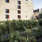 Лозето в Кройцберг е засадено през 1968 г. и се простира едва на един декар. Цялата статия може да прочетете тук.