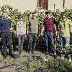 Петер Хан (в средата) с доброволци по време на беритбата през октомври, 2016 г.Цялата статия може да прочетете тук.