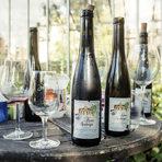 Бутилки с вино Кройц-Неробергер, реколта 2014 г.Цялата статия може да прочетете тук.