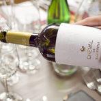 Със салатата и такосите пихме Cheval Chardonnay 2016, а основното комбинирахме с Cheval Mavrud 2015.