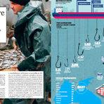 """Проучихме световния рибен пазар и мястото на България в него.---Можете да намерите """"Бакхус"""" вInmedio, Relay, CASAVINO, Кауфланд, Билла, Пикадили, Фантастико, OMVили го поръчайте наabonament@economedia.bg или на + 359 2 4615 349"""