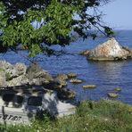 ТЮЛЕНОВОСемейният хотел в ТюленовоПървият български нефт.31 май 1951. Първият български нефт не превръща Тюленово и северното ни Черноморие в преуспяло място, но и днес тук ви посреща чистата миризма на горещи серни извори, диви треви и морска сол, примесена с препечен мазут.