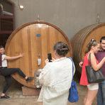 1000-литровите боти се използват за отлежаването на по-пивки, плодови и сочни червени вина. За разлика от бъчвите, ботите могат да издържат и до 100 години без да се сменят.Прочетете цялата статия от преживяването тук