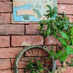 """Кафе """"Велосипед"""".Прочетете цялата статия тук"""