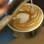 """Chucky's Coffee & Culture е първото заведение в България предлагащо специално кафе от най-висок клас. Открито през 2014 г., вече четвърта година кафе-барът има за цел да популяризира кафе културата в София. Заведението предлага повече от 20 метода за приготвяне на кафе и повече от 10 вида premium и speciality клас кафета. При тях целият процес е затворен - зеленото кафе специално се селектира, изпича се, пакетира се и се предлага на клиентите.ул. """"Христо Белчев"""" 29, Софияул. """"Казбек"""" 61, СофияВсичко за Бакхус Fish Fest вижте тук.КУПЕТЕ БИЛЕТИ ОНЛАЙН ОТ ТУК:"""