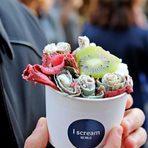 I SCREAM с призив да опитате най-новите Тайландски сладоледи в България!Сладоледите се правят на момента пред вас със свежи натурални продукти по ваш избор и се замразяват на плоча достигаща -30 градуса.>>>Следете ни последните новости във Facebook »Всичко за Bacchus StrEAT Fest вижте тук. »Купете билет онлайн от тук