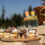"""Меню StrEAT Fest:По време на фестивала, хотел """"Рила"""" ще ви разкрие сладката и солената страна на планината. Очакват ви:► Свинско коремче в """"наш стил""""с мариновани зеленчуци► Мини морковена торта► Мини каноли с три вида пълнеж► По време на фестивала, кулинарният екип на хотел """"Рила"""" ще приготви и лимитирана серия от своя авторски десерт - """"Тайната на планината"""", комбиниращ висококачествен шоколад, сърце от пухкав мус и sponge от Рилски мед.Следете ни последните новости във Facebook »Всичко за Bacchus StrEAT Fest вижте тук. »Купете билет онлайн от тук"""