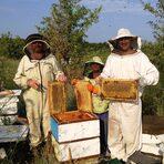 В югоизточната част на България, между долините на реките Марица, Тунджа и Сазлийка, се намира малката китна планина Сакар. Именно тук, сред чистия въздух, бистрата вода и разнообразието от билки е разположено пчелното стопанство на семейство Курдови, които с голяма грижовност, отговорност и постоянство развиват семейния бизнес, като днес той се ръководи от техните наследници Деан Курдов и неговата сестра Димитрина Курдова.Следете ни последните новости във Facebook »Всичко за Bacchus StrEAT Fest вижте тук. »Купете билет онлайн от тук