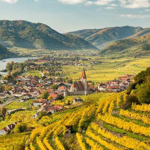 Австрийският Wachau получи статут на DAC