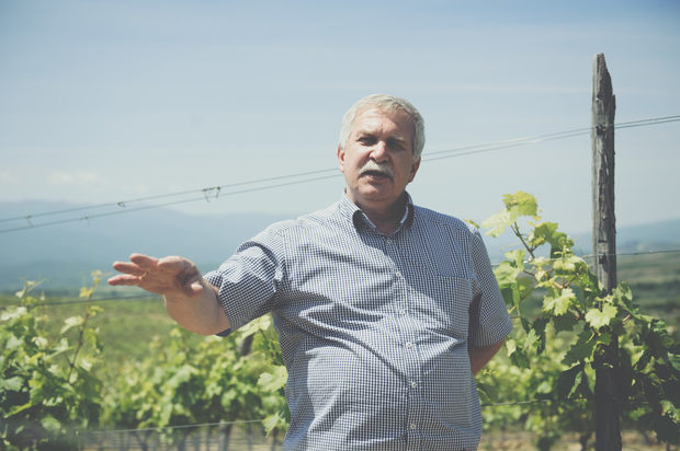 Семейство Зикатанови ни посреща начело с бащата Никола Зикатанов, koйто ни разказа как винарната е открита през 2013 г. и от първия ден е отворена за гости.Прочетете цялата статия тук.
