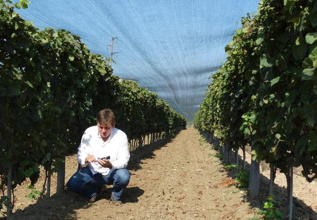 Разположена на 30 км на юг от Варна, Винарна Старо Оряхово е малка семейна собственост, носеща духа на новата вълна български вина. Отлични лозя с невероятно разположение близо до язовир Елешница, гледани с респект към тероара и с чиста реколта добре узряло грозде, винификация на местни сортове, качествени вина срещани основно в менюто на добрите ресторанти, специализираните малки магазини и масите на познавачите на добрия стил.Всичко за Bacchus StrEAT Fest 2 вижте тук.Купете онлайн билет от тук: