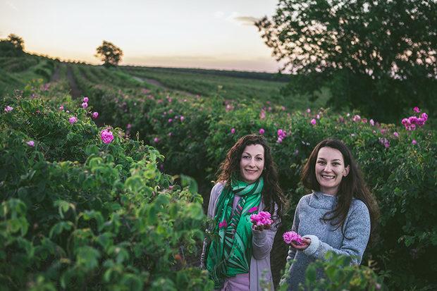 През май и юни се радваме на пролетта и на сезона на розите. Затова моментът е повече от перфектен да обърнем внимание на ядливите качества на българската маслодайна роза с екипа на Rosey's Mark. Специализирани в натурални храни от рози и ролята й в съвременната кулинария, те ни поднясят флоралния вкус чрез със сладка̀та си без захар, чая и любимия шоколад с рози. Само за фестивала Rosey's Mark са ни подготвили изненади - ще празнуваме сезона на розите с нови свежи летни вкусове. Нямаме търпение да разберем повече за тях на 9 и 10 юни.Всичко за Bacchus StrEAT Fest 2 вижте тук.