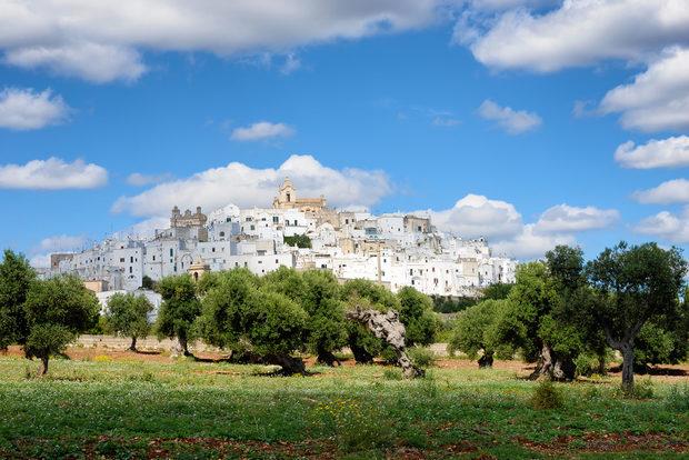 Пулия е регион на Италия като никой друг - със своите хилядолетни маслинови гори (по официални данни днес маслиновите дървета в Пулия наброяват над 50 милиона); искрящобелите си пясъчни плажове и третата най-дълга плажна ивица в Италия (единствено островите Сицилия и Сардиния имат повече); феноменалните пещери, достигащи дълбочина 60 метра, които крият над 20 хиляди стъпки от динозаври; искрящите бели градове на долината на Итрия с готическата си архитектура; най-голямата колония от розово фламинго в Европа; и не на последно място - изключителните червени вина и незабравимата кухня.Вижте цялата статия тук.