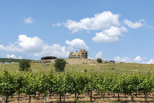 Благодарение на Едоардо Миролио в България от години може да пием висококачествено пенливо вино.В избата, разположена сред лозята на с. Еленово, близо до Нова Загора, с много прецизност се грижат за целия производствен цикъл - от началната преработка на гроздето до бутилирането. Всички съдове са от водещи доставчици от Франция, Италия и България, а виното отлежава в първокласни френски дъбови бъчви.По време на Fish Fest-а ще можете да се насладите освен на пенливите, така и на отличителните бели и червени вина от различните серии на избата.Всичко за Бакхус FishFest вижте тук.Научавайте новостите за събитието във Facebook.КУПЕТЕ БИЛЕТ ОНЛАЙН >>>