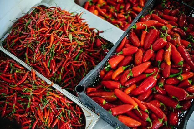 """""""От семка до бутилка"""" е слоганът на бранда и означава, че контролират целия цикъл на производство - от засаждане на семената на над 70 вида люти чушки в собствената си ферма в Кокаляне до отглеждането, обработката и предлагането им на българския и външен пазар. Всички продукти на марката са 100 % натурални. През 2018-та Чили Хилс откриха и собствен фирмен магазин в сърцето на София, който е и първият по рода си магазин в страната.>>>Следете ни последните новости във Facebook »Всичко за Bacchus StrEAT Fest вижте тук. »Купете билет онлайн от тук"""