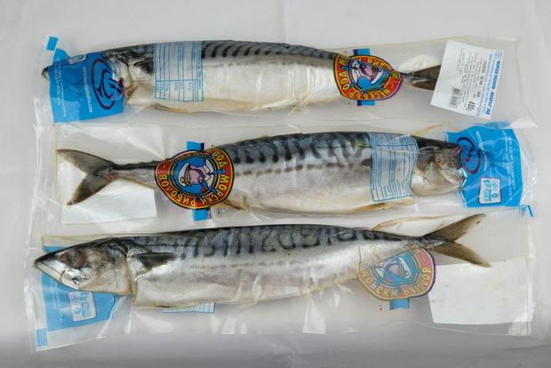 Всичко за Бакхус Fish Fest 2 вижте тук.Научавайте новостите за събитието във Facebook.КУПЕТЕ БИЛЕТ ОНЛАЙН >>>