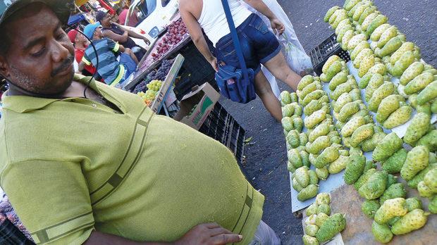 Редки плодове на кактус, почти непознати и за самите бразилци. На пазара на Ресифи ги продават с дълго обснение за чудотворното им въздействие върху тялто. Проблемът с тях е, че няма как да бъдат изядени - те са твърди до степен, че и сеч със сабя не ги лови, и месестата им част е изпъстрена с големи, горчиви семена, от които е невъзможно да бъде отделена