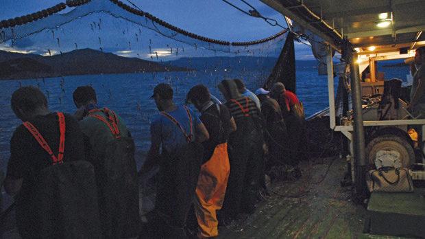 Екипажът от гърци, българи и албанци току що е вдигнал почти празната мрежа - заплетената в нея аншоа е достатъчна за 5-килограмова консерва