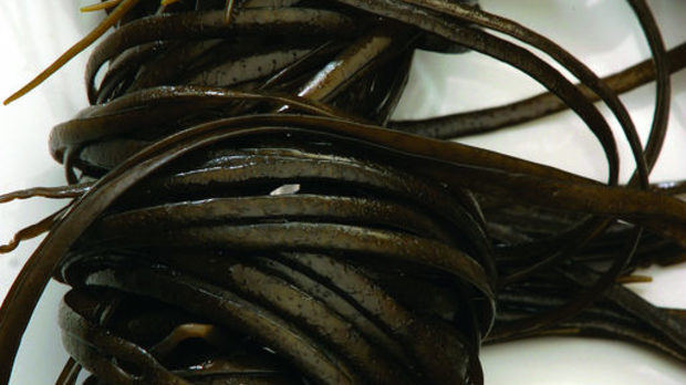 Морски спагети Himanthalia elongata