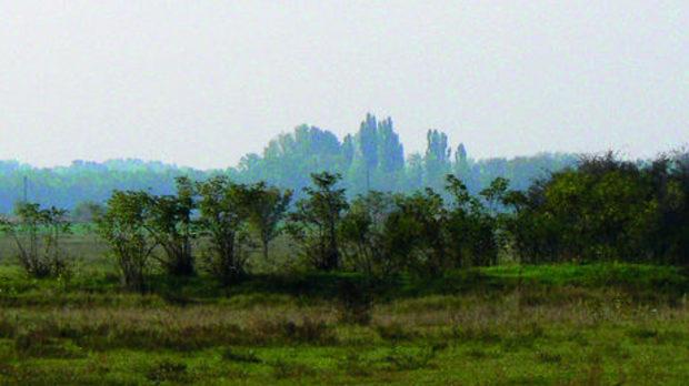 Унгарската пуста е равна като езеро, каквато някога е била.